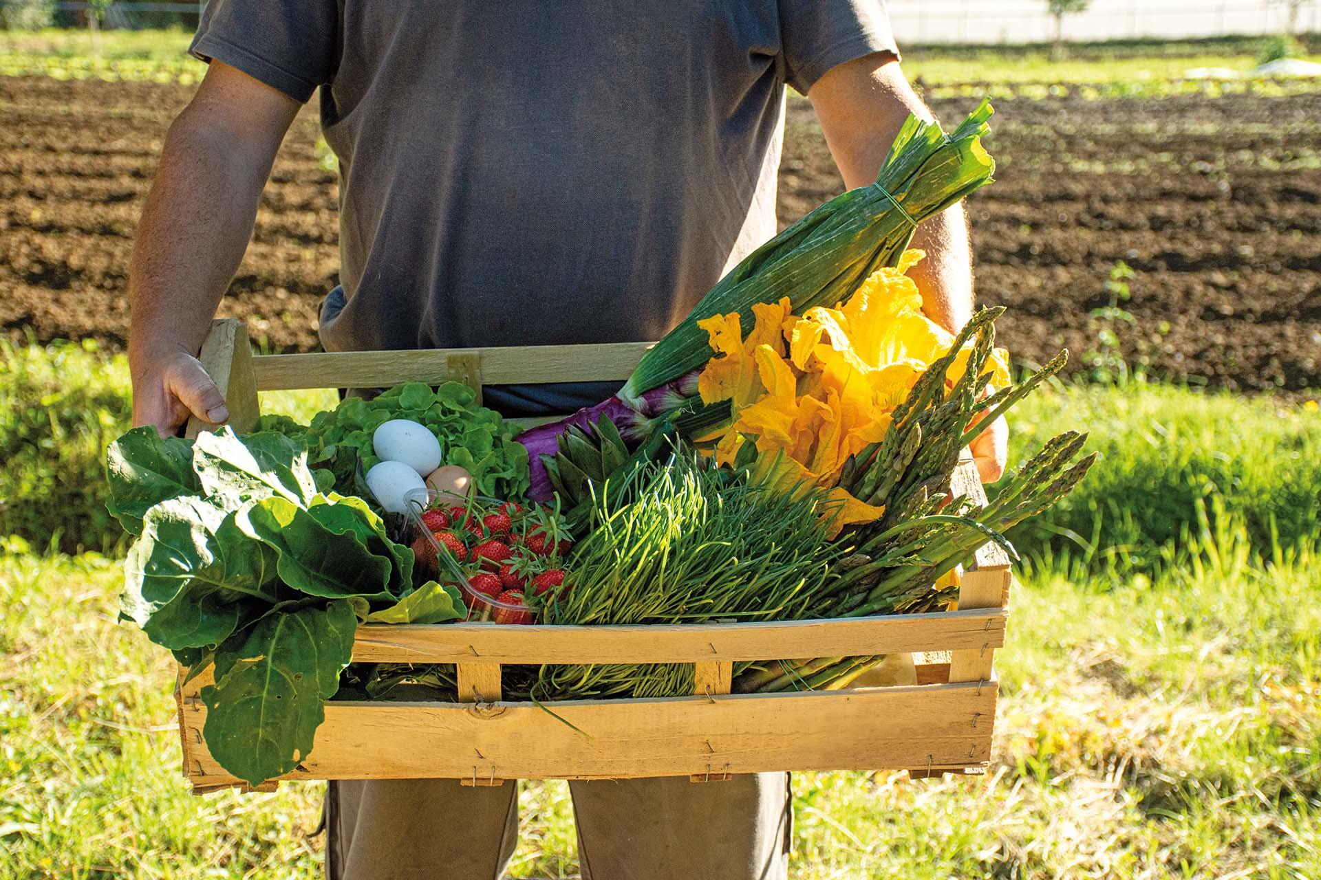 Vendita diretta. Cia Toscana Centro: sempre più famiglie comprano dagli agricoltori (+10%)