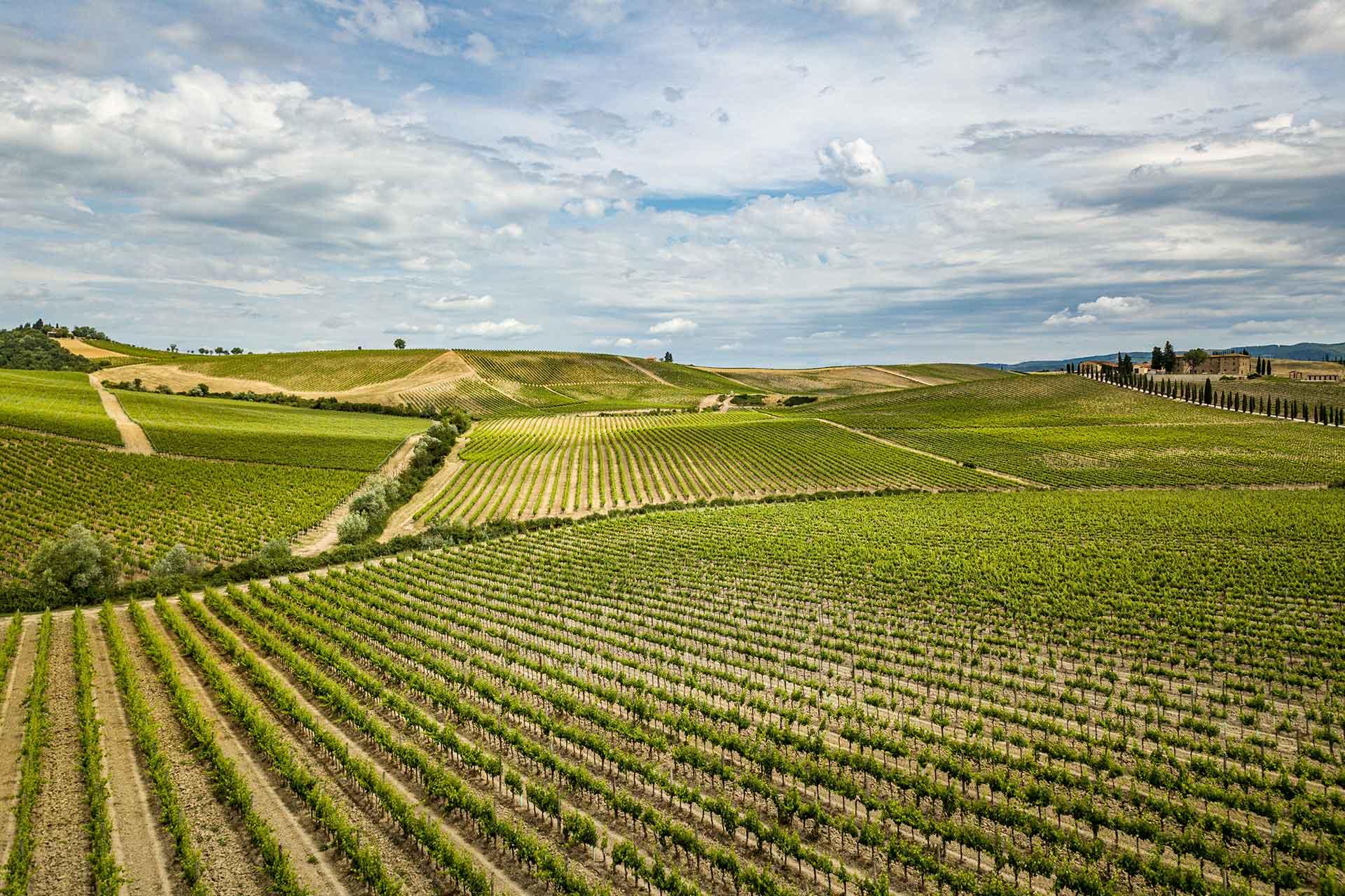 Psr Toscana. Proroga al 25 giugno 2021 per le domande aiuto e pagamento
